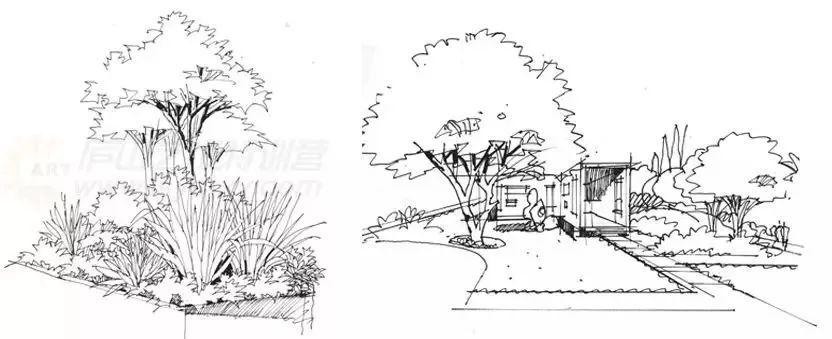 作为景观设计师必须掌握的景观线稿表现图片
