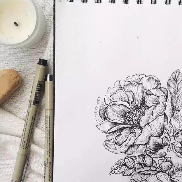 手绘花卉的线描图 需要多观察真花 观察和练习的仔细 针管笔手绘这么