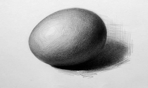文化 正文  鸡蛋是一个典型的代表静物,属于圆形,椭圆形,和石膏像球体图片
