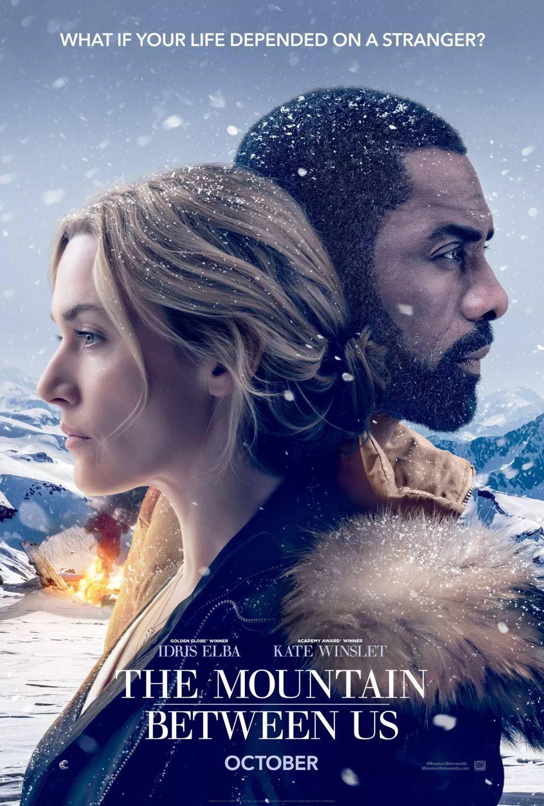 这还真不是有钱就能去的!全球首部南极实拍电影,听说差点把赵又廷拍瞎了...