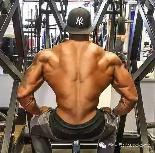 背阔肌_练背时手臂酸,背阔肌无感。怎么办?
