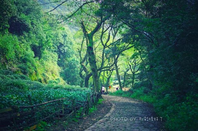 私藏杭州最佳徒步路线,不仅景美,网红民宿还扎堆儿