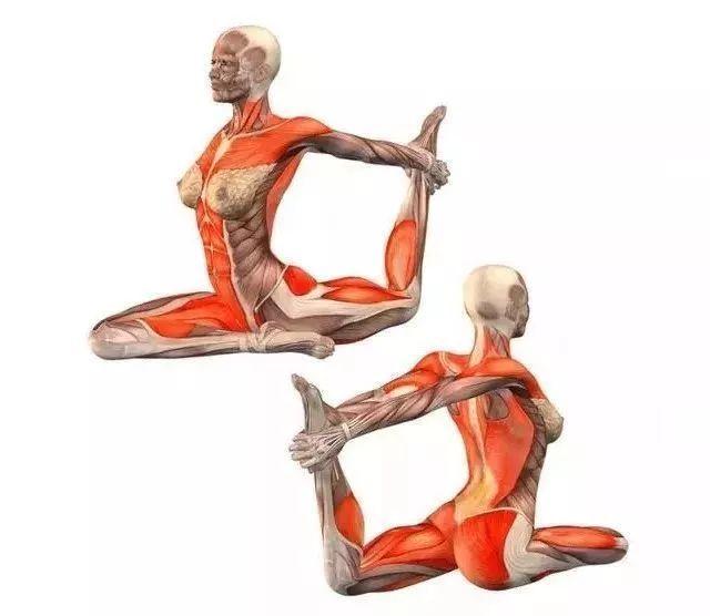 20个经典拉伸体式,每天拉拉筋,身材也变好了,太厉害了