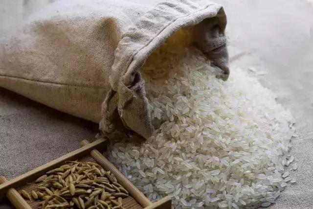 看看大米米_[养生] 经常买大米的快看看,现在知道还不晚!
