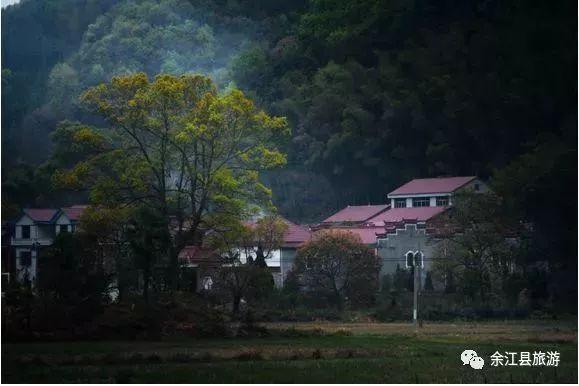 余江人口_余江一中的校花图片