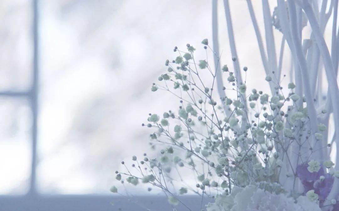 【一日一禅】人生有些事是不能代替的 - 清 雅 - 清     雅博客