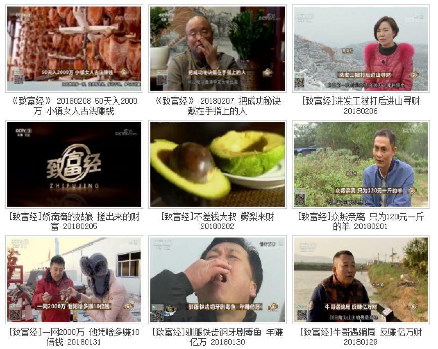 对话央视主持人刘栋栋:进入农业频道是误打误撞,更是一种偏得