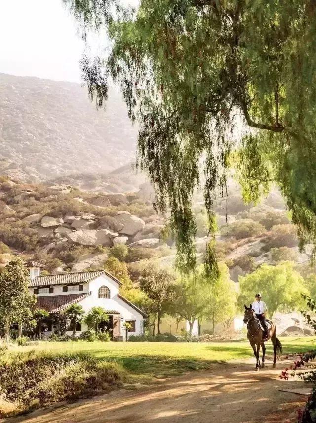 世界上最好的马场,在这里骑马是一种人生奢享!