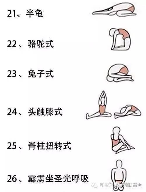 体式|高温瑜伽-挑战极限图片