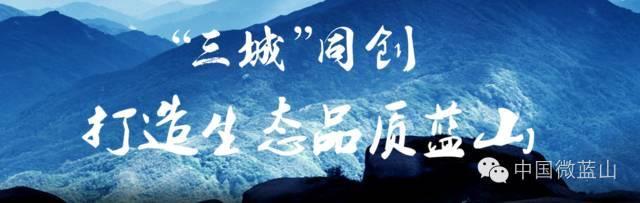 岳元之山关支东情之国麓公于松阳勋葬蔡日坡
