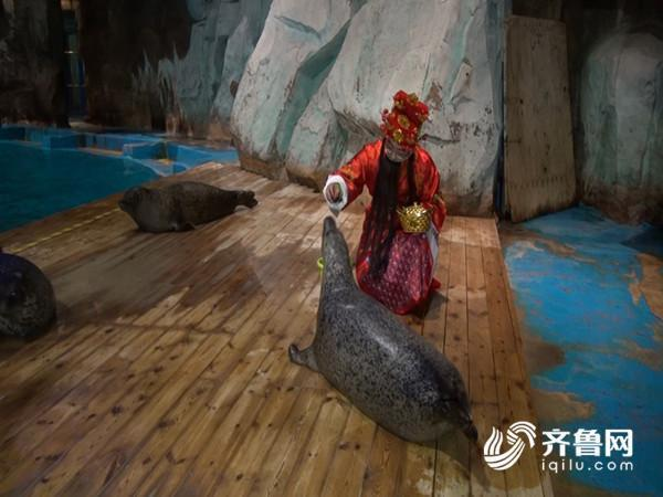 【家邦网聚·搜集旺年】青岛:福禄寿喜送吉利海洋动物明星大贺年