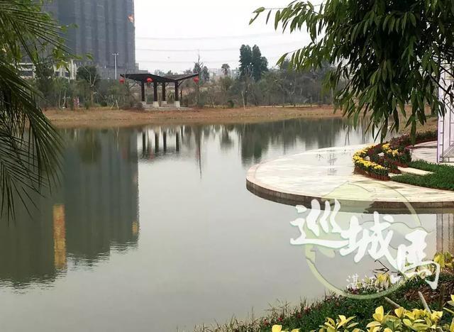 湛江东菊公园规划图