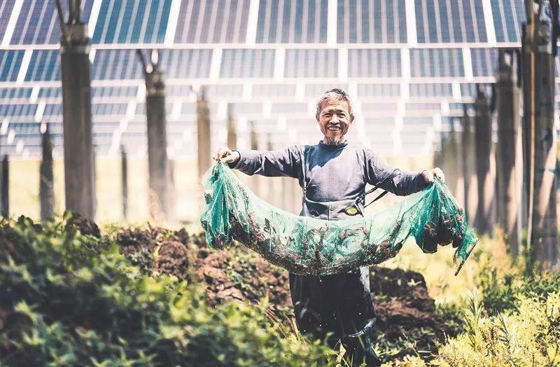 协鑫光伏扶贫电站总量全国第一,帮扶3.7万多贫困户走上致富路