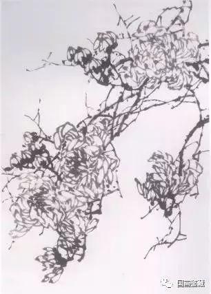 水墨画菊花的画法图文教程,水墨菊花创作技法步骤示范图片