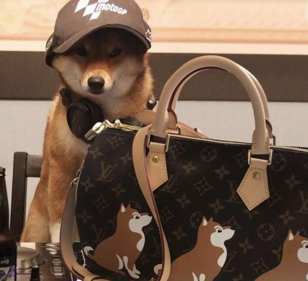 lv gucci还有prada_新年好!Gucci、LV狗年表情包,YSL、Prada等大牌新年红包和狗年 ...