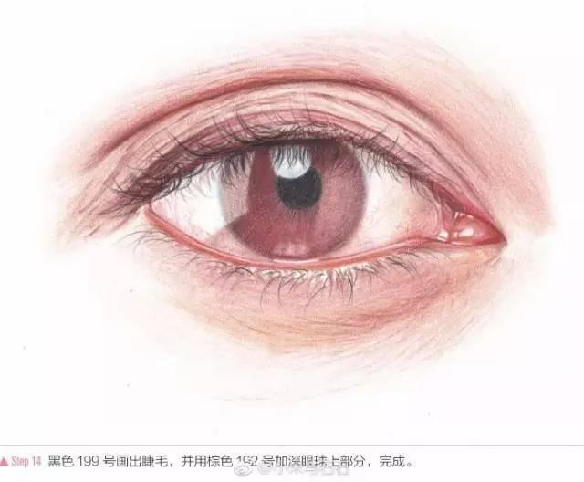 教你用彩铅笔画眼睛,超详细教程!