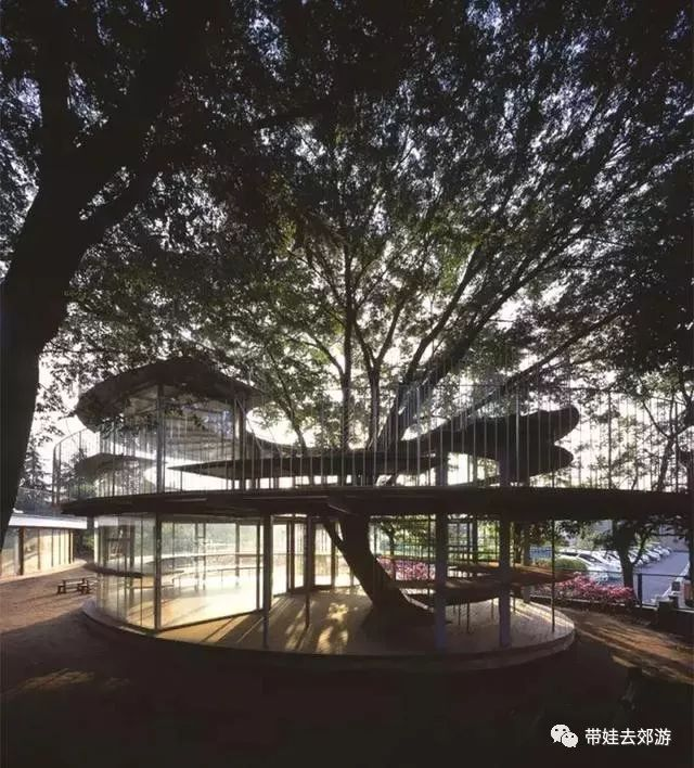 全球最美的10大幼儿园 还有一个是中国的