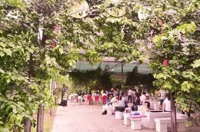 1960年广西的人口_广西贫困人口