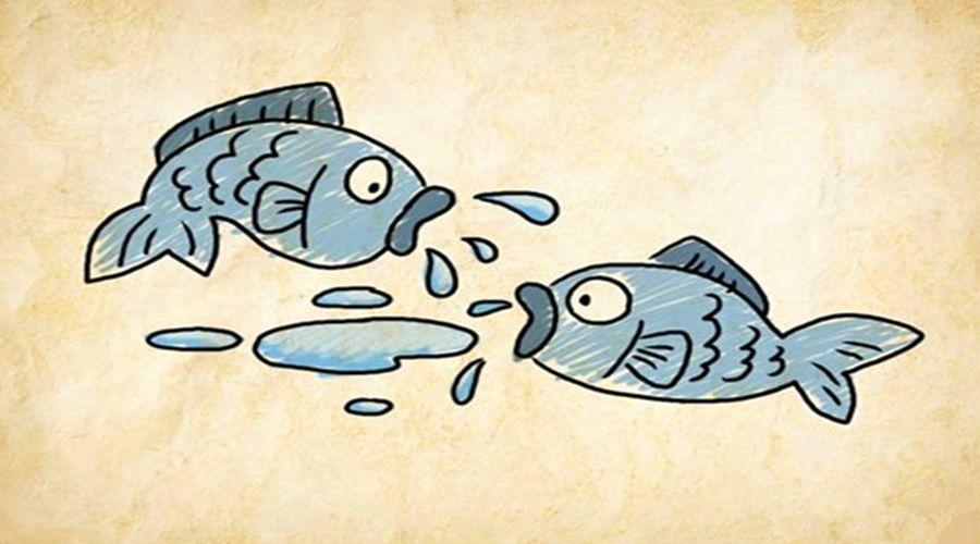 鱼看图猜成语是什么成语_两鞋导购为抢单快打起来了,店长竟然这么做