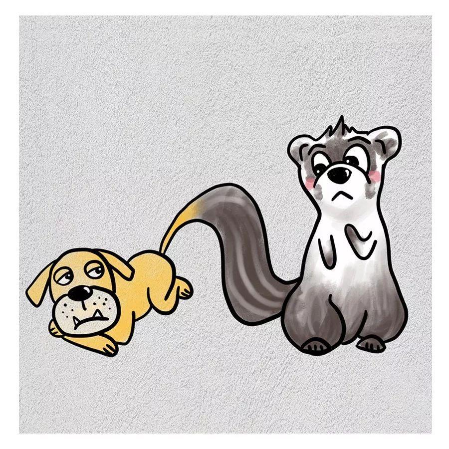 狗貂看图猜成语_看图猜成语狗和貂