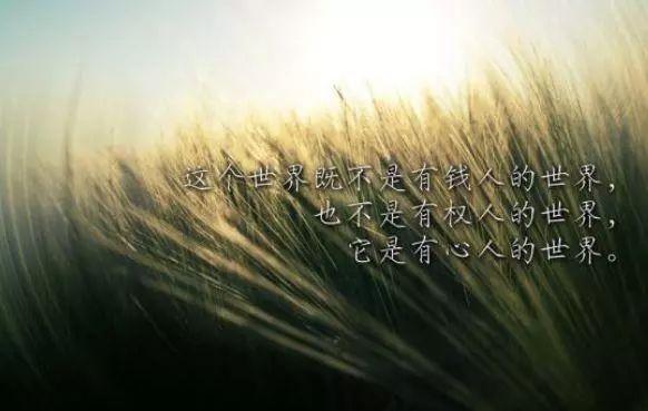 【人生感悟】励志人生,人生感悟