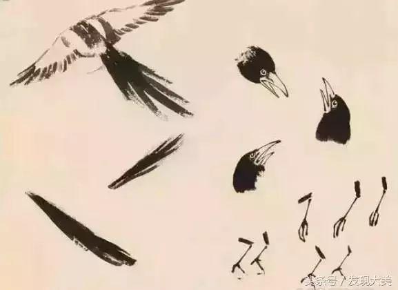 喜鹊,八哥,麻雀的国画步骤,徐悲鸿大师的技术
