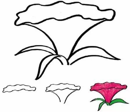 各种花朵简笔画,寒假让孩子轻松认识各种花卉!