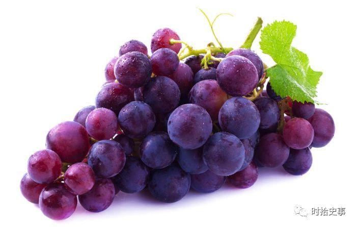 曹丕为甚么那么爱吃葡萄? 轶事底蕴 第1张