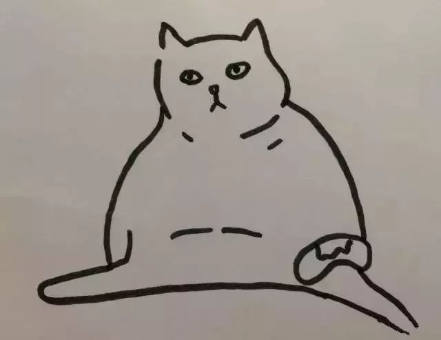 意不意外,惊不惊喜,刺不刺激 肥肥的一坨 背影实在有够销魂 这只猫用