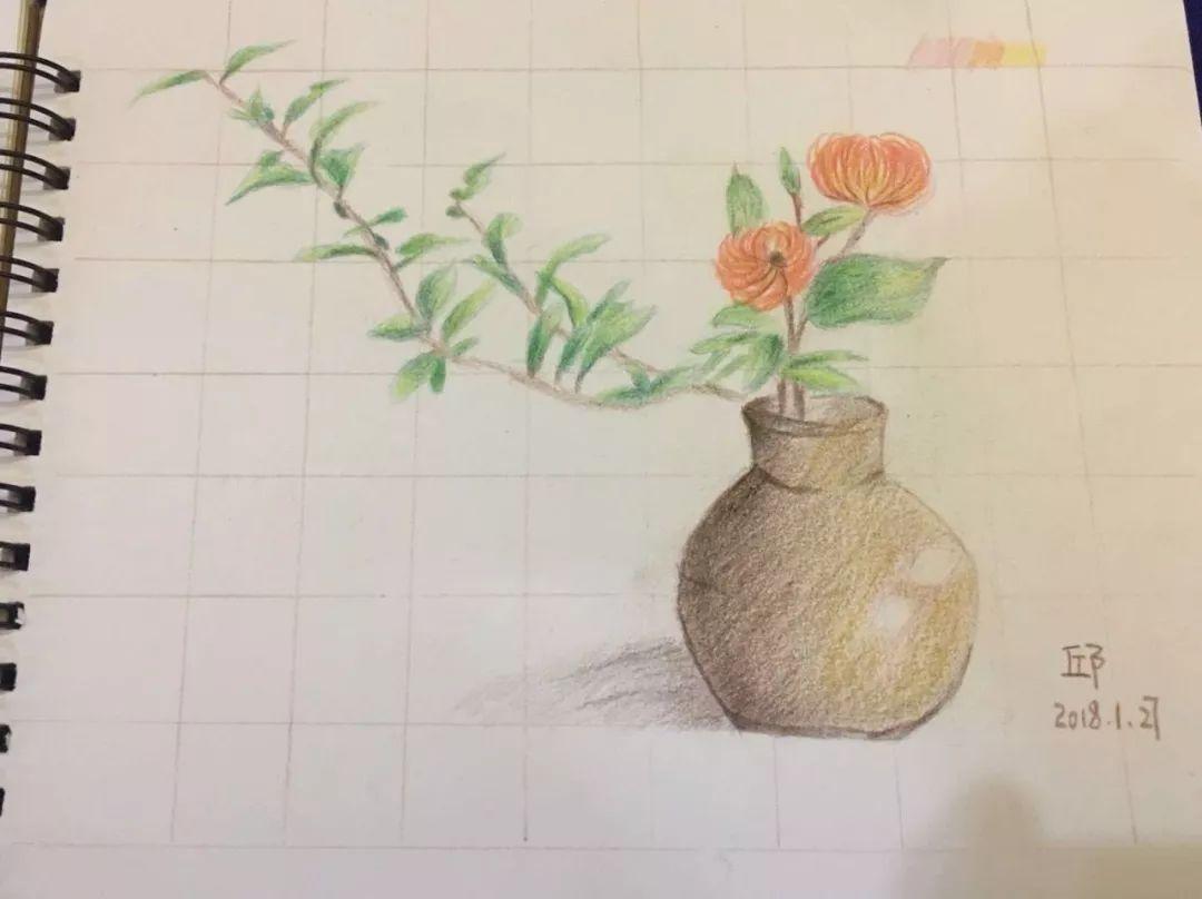 彩铅手绘课程