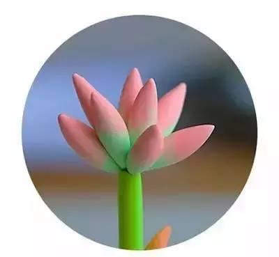【陶泥手工】春季创意橡皮泥创意手工制作,含