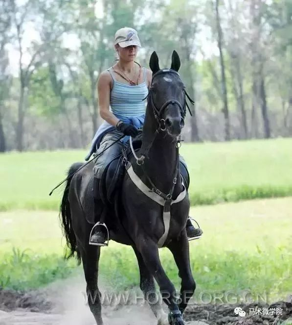 长期造成,对身体骑马影响?博爱羽毛球图片