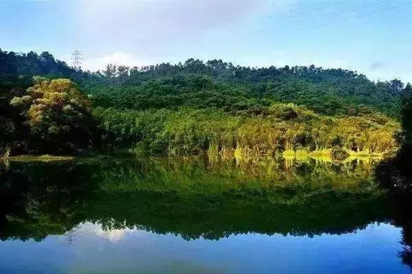 今年还将再新增6个 ▼从化区吕田狮象森林公园 广州正在一步步向前 不图片