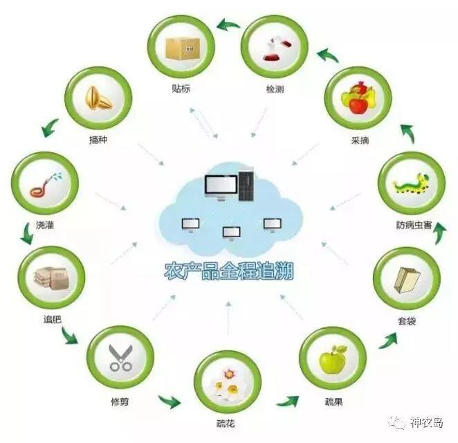 农业区块链|体育旅游-陕西康大体育设施