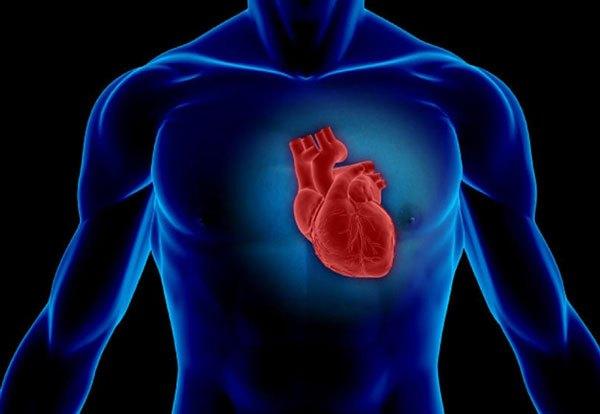 世界首个人造心脏问世 三类心脏疾病治疗有希望了!