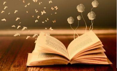 书香气息的天然氧吧 陶冶身心智慧图片