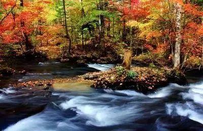 人生最曼妙的风景,莫过于静水流深 - 清 雅 - 清     雅博客