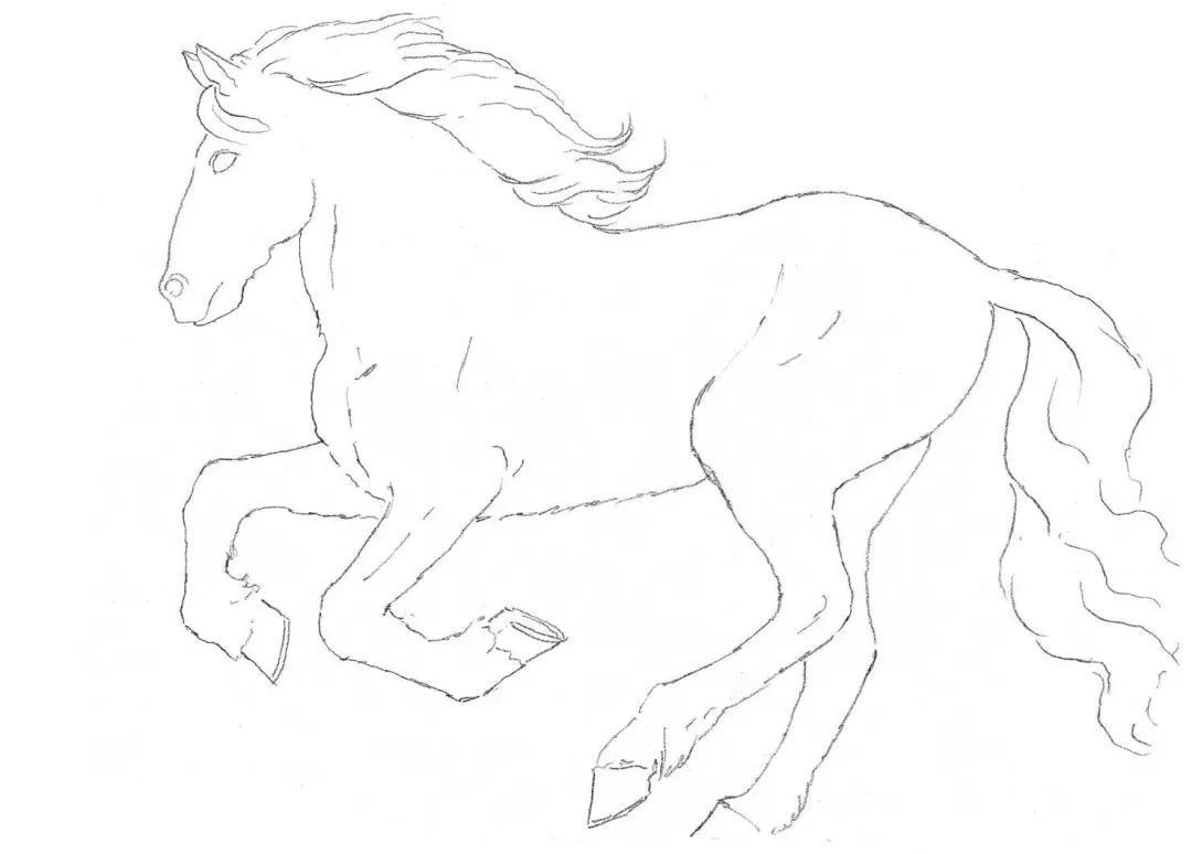 五步学绘画 超适合0基础的素描小教程,快点收藏吧图片