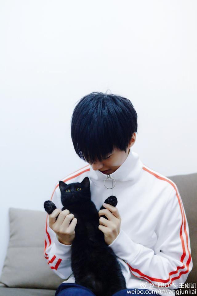 猫纹少年王俊凯_TFBOYS开工照,王俊凯唯美,易烊千玺侧脸杀,王源耳朵抢镜