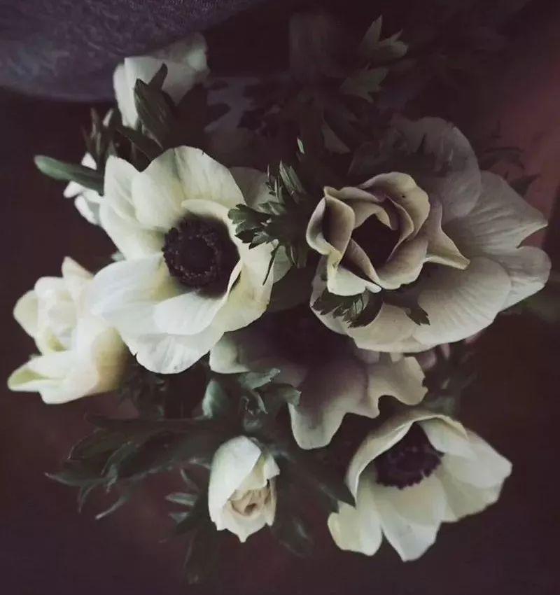 """写在白色情人节之前,请送我这些""""花""""妆品"""