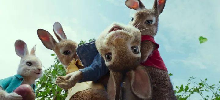 《比得兔》剧照