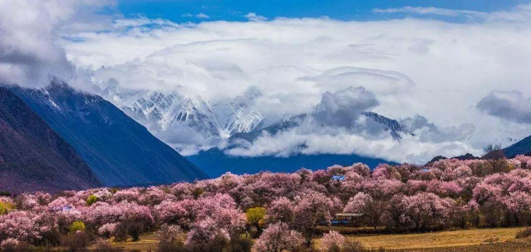 三月,去中国春天最美的地方吧!