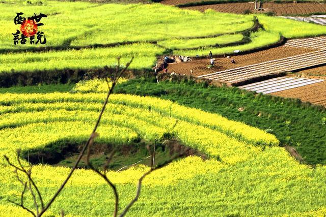 纳灰村落中的神秘【地眼】,成因是谜,被誉为中国的麦田怪圈