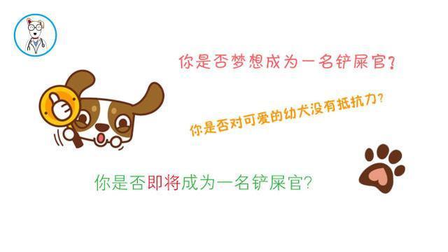 网友给狗狗注射疫苗时喂了驱虫药,结果让他后悔,这是为什么?
