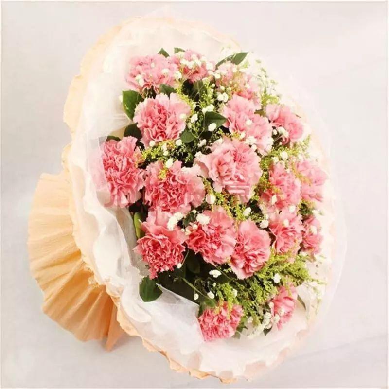 11朵粉色康乃馨花束