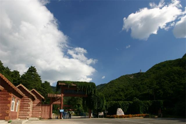 旅游 正文  九龙山国家森林公园集古洞,幽林,奇峰,秀水为一体,以其图片
