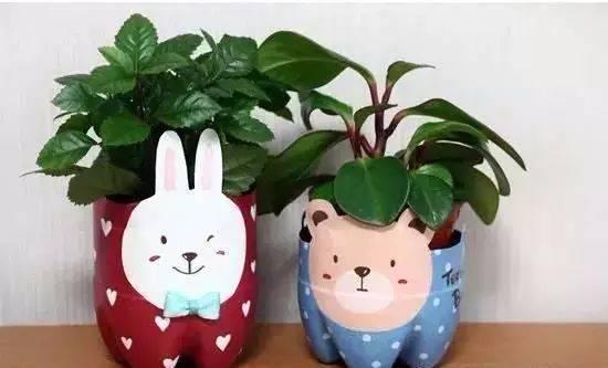 小兔子塑料瓶花盆