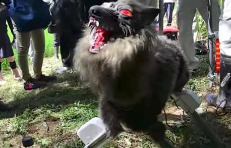 科技:为了对付野猪,机器怪兽现身日本农场!