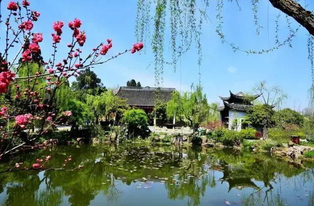 这个美了2500年的城市,每年春天你定会因一句诗想起它!