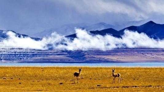 美玉草原景区--aa 梅里雪山(北坡)景区--aa 莽措湖景区--aa 吉荣峡谷
